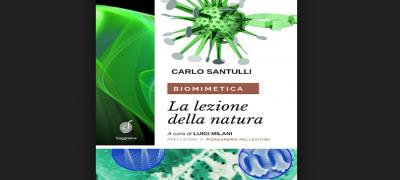 Biomimetica. La lezione della natura