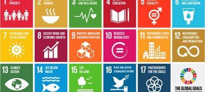Gli Obiettivi del Millennio