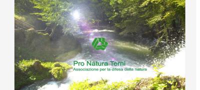Tutela e valorizzazione dell'ambiente
