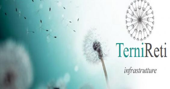 Amministratore e revisori per TerniReti