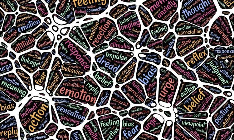 I giovani e l'educazione emotiva