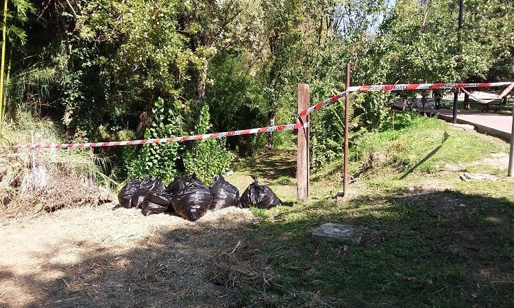 Parco Ciaurro: al via la pulizia e manutenzione